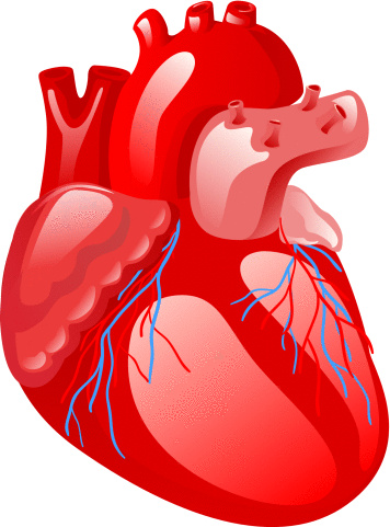 Cardiology and Cardiac-Surgery Symposium 1 July 2019